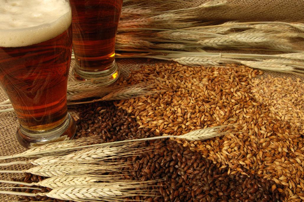 bieres-malt.jpg